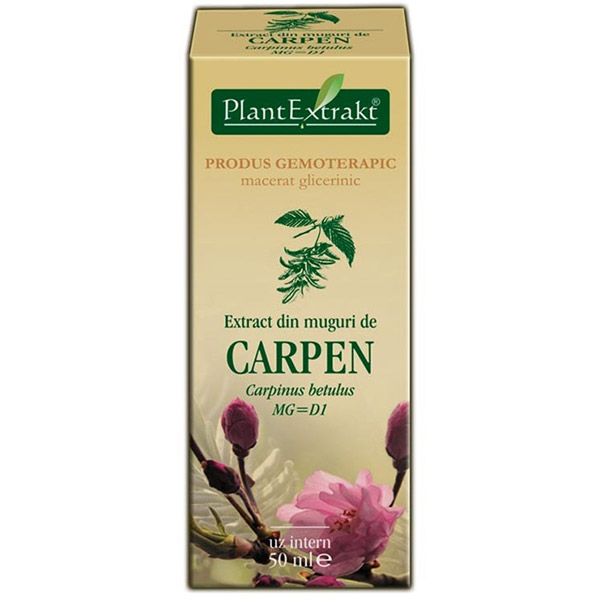 PlantExtract Extract din muguri de carpen 50 ml