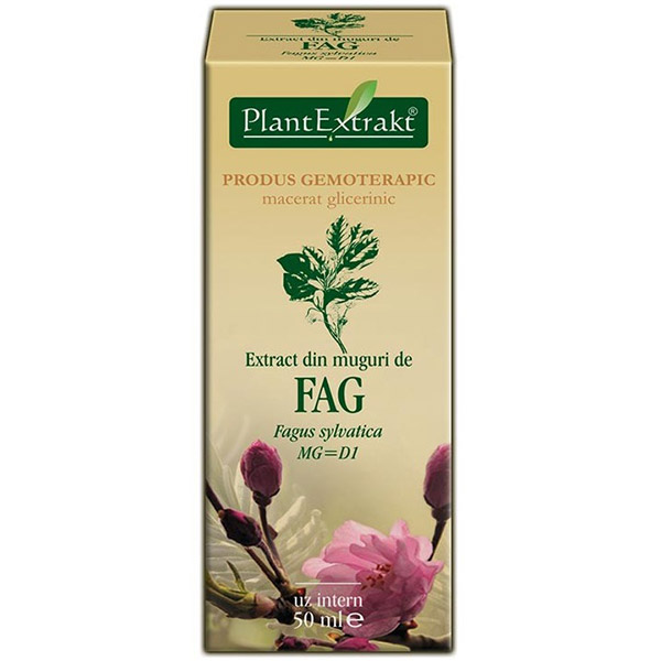 PlantExtract Extract din muguri de fag 50 ml